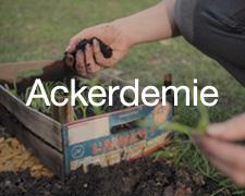 banner_ackerdemie_200x160
